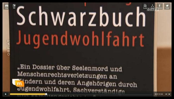 Schwarzbuch Jugendamt Jugendwohlfahrt Österreich